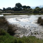 tidal flow art-aliki-jenny-tsoumpri-art-productions-1